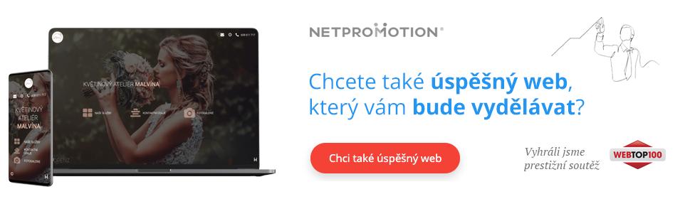 Tvorba webu, který vydělává – Netpromotion